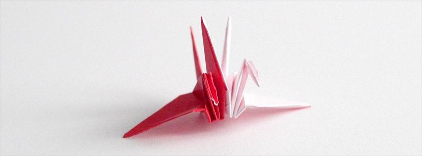 Laboratorio di Origami
