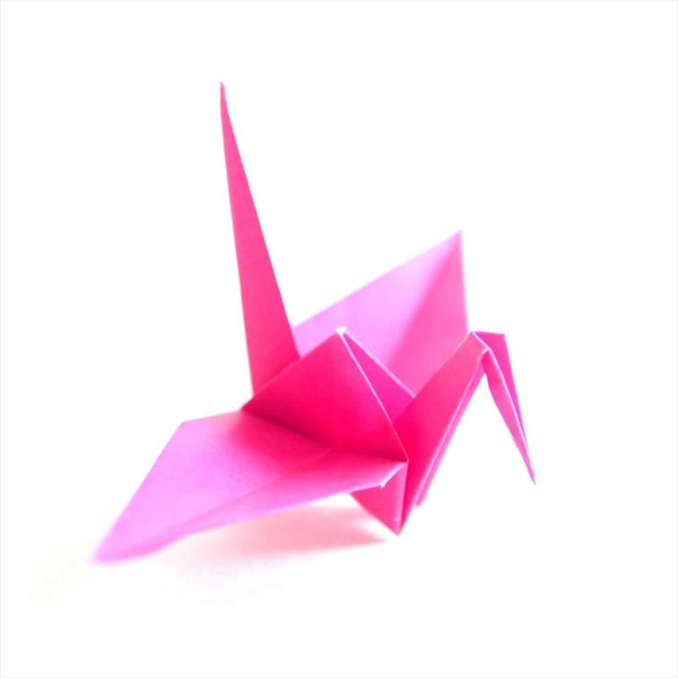 Lezione di Origami On Line